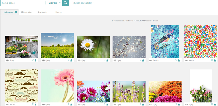 flower-or-bee-stock-images